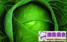 卷心菜:德国新蔬菜之