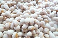 土法自制黄豆酱的做法步骤5