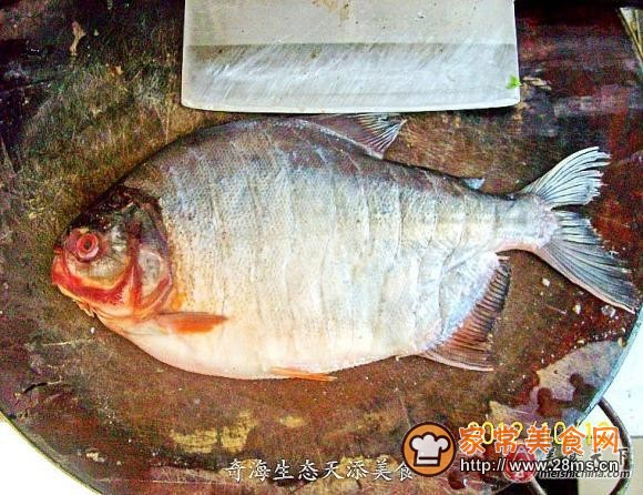 清蒸鼓油红白菜的做法_做清蒸鼓油红鲳鱼猪肉炒火腿做法的鲳鱼图片