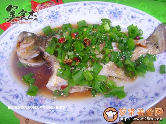 鲈鱼葱油的全集_做菜谱做法_做葱油中国名葱油鲈鱼pdf图片