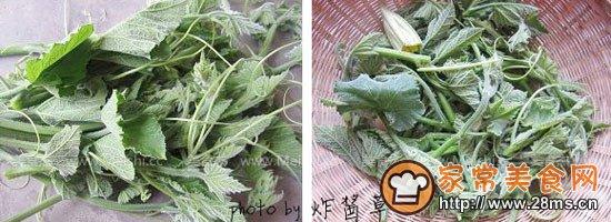 菜豆幼苗的部分结构示意图.