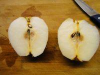 鲜榨梨汁的做法步骤2