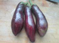 霜茄菜的做法步骤1