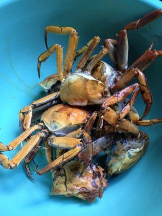 焖锅香辣蟹的做法步骤:3