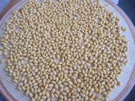 香酥黄豆的做法步骤:5