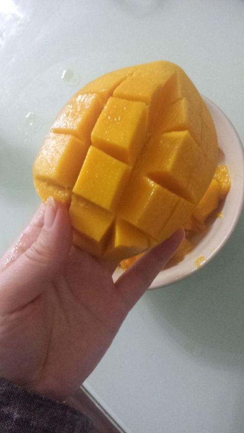 超简单0失败的芒果牛奶布丁