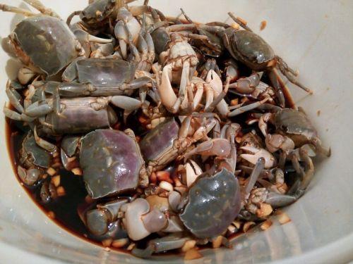 超级简单腌螃蟹的做法图解3