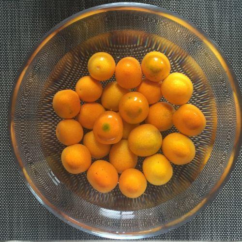 蜜汁金桔的做法图解1