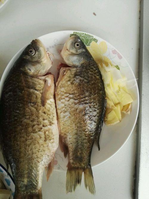 豆腐鲫鱼汤的做法图解1
