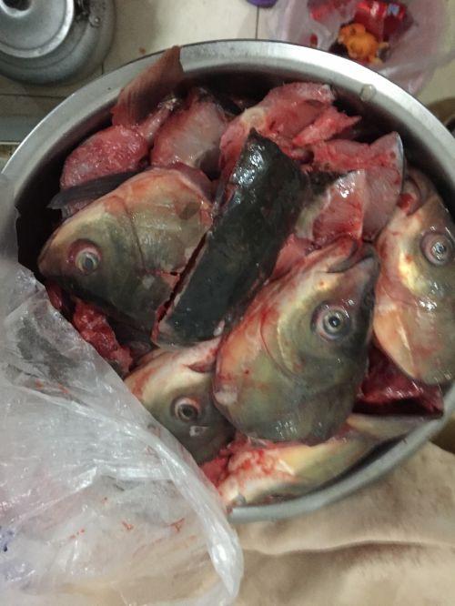 不会失败的酸菜鱼的做法图解2