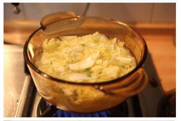 白菜粉丝羊肉汤的做法图解4