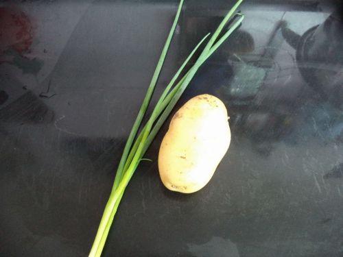 洋芋擦擦的做法图解1
