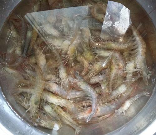 盐水对虾的做法图解1