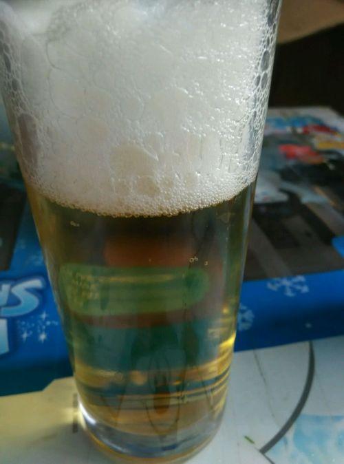 胡罗卜啤酒鸭的做法图解11
