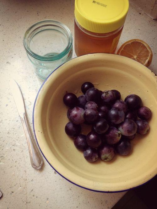 柠檬蜂蜜滋补葡萄果酱的做法图解1