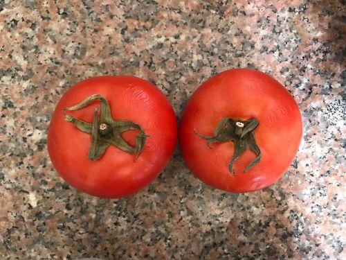 番茄酱的做法图解1