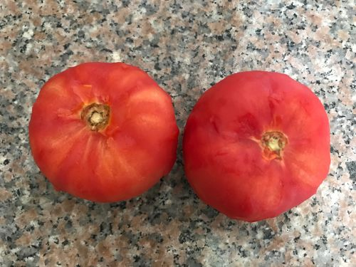 番茄酱的做法图解4