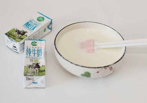 脆皮炸鲜奶的做法图解2