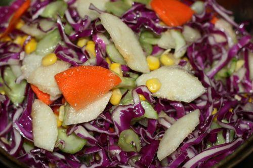 果汁蔬菜沙拉的做法图解4