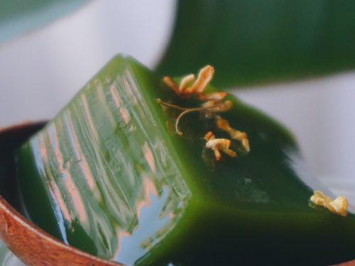 蜂蜜抹茶冻的做法图解8