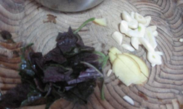 紫苏烧排骨
