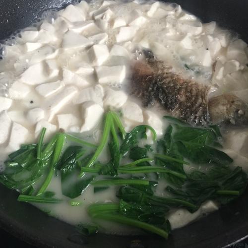 鲫鱼豆腐汤的做法图解8