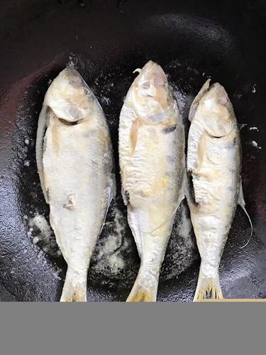 香煎令鲫鱼的做法图解3