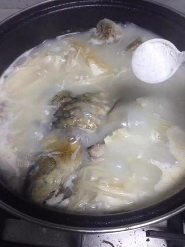 鲫鱼炖豆腐的做法图解6
