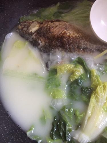 鲫鱼白菜汤的做法图解5
