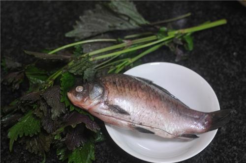紫苏砂锅鲫鱼蒸的做法图解1