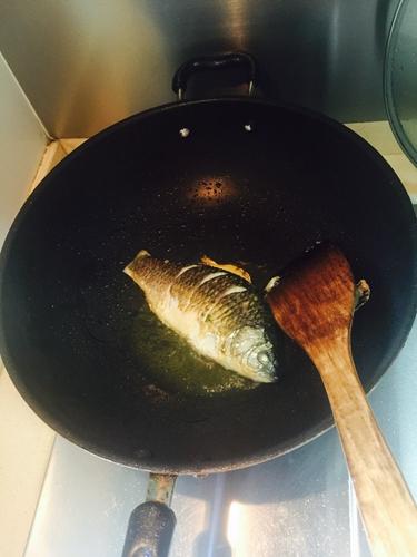 催奶神菜精品鲫鱼汤的做法图解3