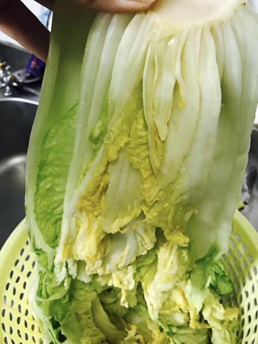 泡菜的做法图解1