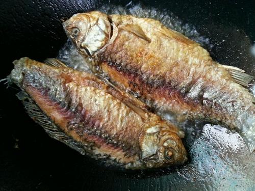 红烧鱼的做法图解5