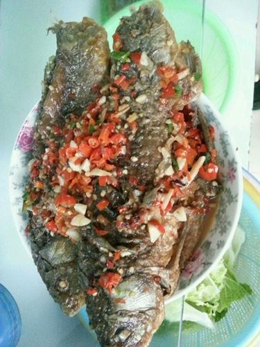 红烧鱼的做法图解8