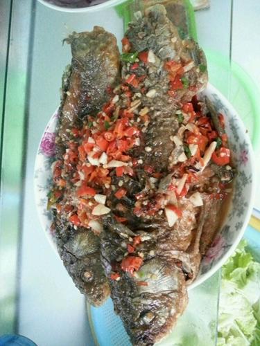 红烧鱼的做法图解9