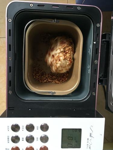 全麦红枣餐包的做法图解4