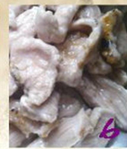 外酥里嫩的锅包肉的做法图解6