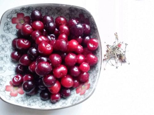 樱桃罐头的做法图解1