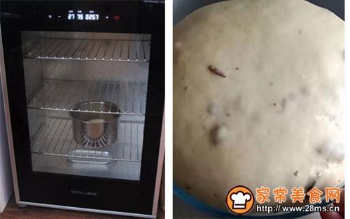 红薯杂果麻花面包的做法图解3