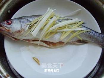 清蒸鲈鱼的做法步骤:5