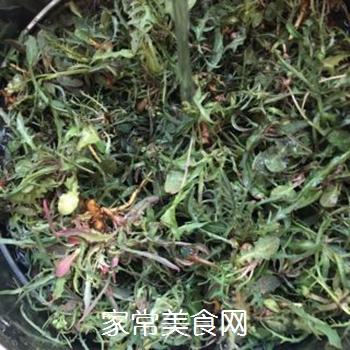苦菜豆浆的做法步骤:4
