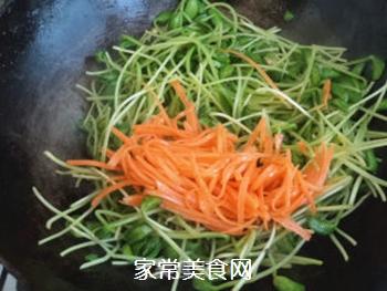 清炒黑豆苗的做法步骤:6