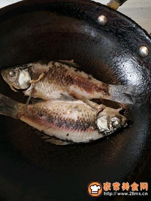 简单美味鲫鱼汤的做法图解3