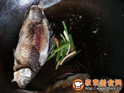 简单美味鲫鱼汤的做法图解4