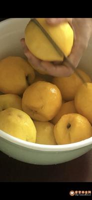 冰镇黄桃罐头的做法图解3