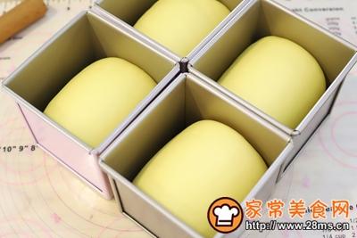 日式手撕杏子酱吐司的做法图解13