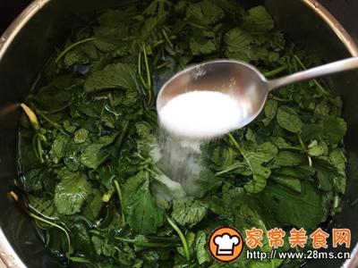 秋季保健萝卜苗黄豆粉小豆腐的做法图解2