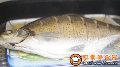 清蒸鳊鱼的做法图解4