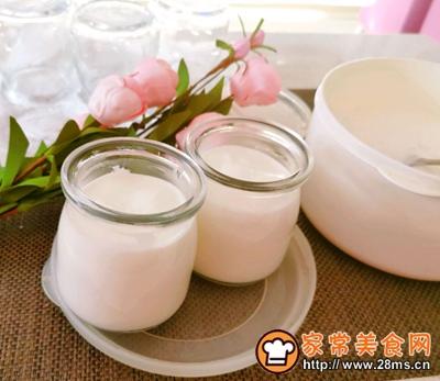 自制原味酸奶的做法图解12