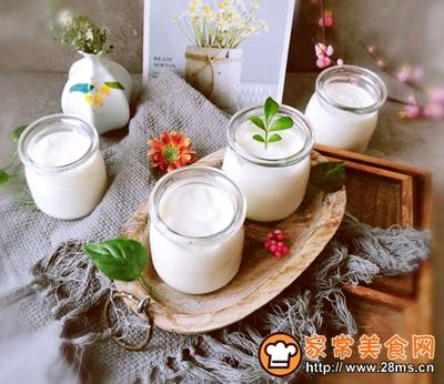 自制原味酸奶的做法图解15